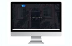 PR394 - Slenderline Glass Website