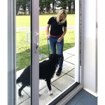 Window News -PatioMaster case study South East