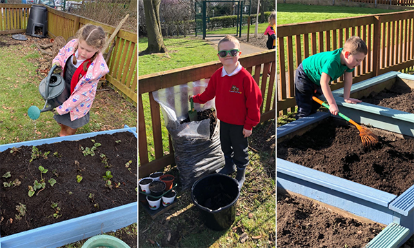 Green Fingered School Children 'Hop To It' Thanks To Morley Glass's Greenvision Fund