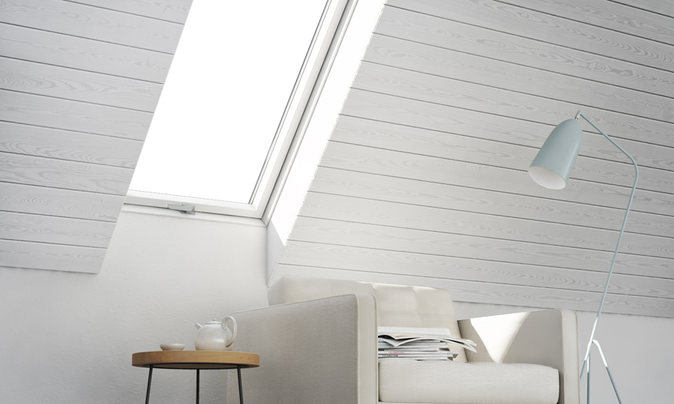 High-Performing Liteleader Roof Windows From Novolux